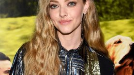 Oops-Amanda-Seyfrieds-Tonight-Show-Interview-Gets-Interrupted.jpg