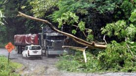 2-billion-needed-to-restore-agricultural-sector-from-storm-damage.jpg